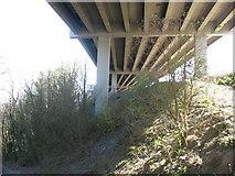 SH5371 : Below the upper, road, deck of Pont Britannia by Eric Jones