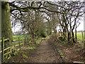 SE1425 : Rookes Lane, Hipperholme by Humphrey Bolton