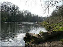 SE2436 : River Aire, by Rein Road by Rich Tea