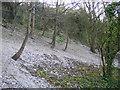 TQ0308 : Chalk scree by Stephen Craven