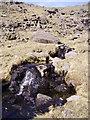 NY2600 : Tarn Head Beck by Michael Graham