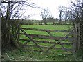 SJ2531 : Field Gate and Field by the Old Oswestry Racecourse by John S Turner