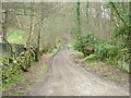 NY8362 : Byway to Elrington by 27th Newcastle Scouts