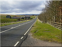 NY8693 : The A68 road (Dere Street) looking towards Dargues by Phil Catterall
