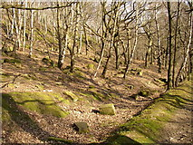 SE1223 : Blocks of stone in Cromwell Wood, Southowram by Humphrey Bolton