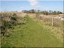SE1223 : Footpath 46 across Cromwell quarries, Southowram by Humphrey Bolton
