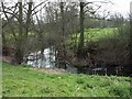 SO5076 : River Corve meandering towards Ludlow by Jerry Evans
