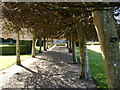 NO3848 : Glamis Castle Italian Garden by Darrin Antrobus
