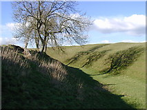SU1070 : The ditch at Avebury henge by Chris Gunns