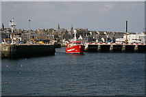 NK0066 : Fishy business in Fraserburgh by Dominic Moore