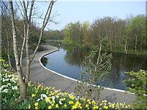 O1429 : Dodder Valley Park Pond by JP