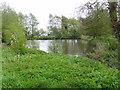 SJ7201 : Duck pond near Sutton House by A Holmes