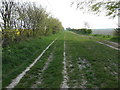 TL3242 : The Icknield Way near Litlington by Jeff Tomlinson
