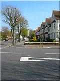 TQ2804 : New Church Road by Simon Carey