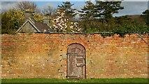 SH7770 : Door To The Secret Garden by Alan Walker