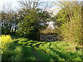 NZ3627 : Gate and stile across the bend in the lane by Carol Rose
