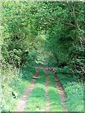 SP3826 : Green Lane by David Luther Thomas