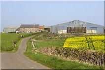 NU0341 : Kentstone farm by Phil Champion