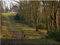 SU7209 : Staunton country park by Chris Gunns