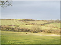 SW7433 : View over Cornish countryside by Jonathan Billinger
