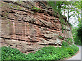 SO7894 : Sandstone Exposure, Hopstone, Shropshire by Roger  Kidd