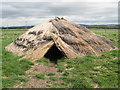 NT9433 : Maelmin - reconstruction of Mesolithic hut by Lisa Jarvis