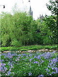 NS5666 : University tower from Kelvinrove Park by Thomas Nugent