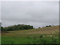 ST6664 : View over Wansdyke towards Long Hill by Virginia Knight