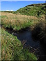 NS2662 : South Grane Burn by wfmillar