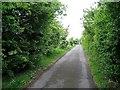 NZ2539 : Lane approaching Littleburn Farm Railway Bridge by Roger Smith