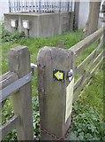 TF3242 : Macmillan Way sign by Graham Horn