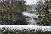 SK2571 : Chatsworth Park by Jo Turner