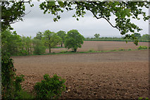 SK1634 : Farmland north of Sudbury by Stephen McKay
