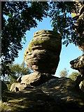 SE2064 : Brimham Rocks by Chris Gunns