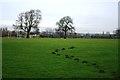 SK5536 : Playing Fields by Mick Garratt