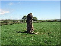 SM9527 : Standing stone near Broadmoor by ceridwen