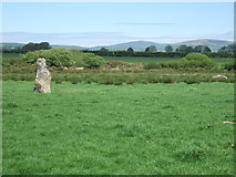 SM9527 : Broadmoor standing stone from west by ceridwen