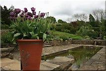 SE2853 : Edwardian Garden, RHS Harlow Carr by Katy Walters