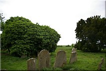 TL3676 : Old St Helen's Church by Fractal Angel