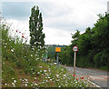 SO6521 : Speed camera before 'hairy' junction in Lea by Pauline E