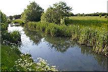 SJ8092 : Flood Alleviation Channel, Sale Ees Flood Basin by Phil Champion