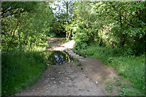 SJ8092 : Ford and stepping stones, Sale Water Park by Phil Champion