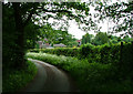 SJ7942 : Dab Green Farm by Neil Lewin
