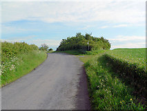 TF3380 : Wolds Road by Ian Carrington