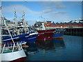 G7176 : Fishing Fleet at Killybegs by Adie Jackson