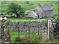 NY7159 : Ruined cottage below Todhillwood Fell by Mike Quinn