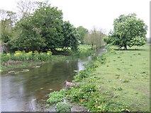 O0869 : River Nanny at Beaumont Bridge - upstream by Jonathan Billinger