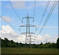 SU5409 : 400 KV supergrid pylons in Botley Wood by Peter Facey