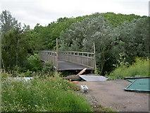 TQ4382 : A Broken Bridge Near The Greenway by Danny P Robinson
