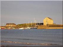 NT4999 : Elie Harbour by Sandy Gemmill